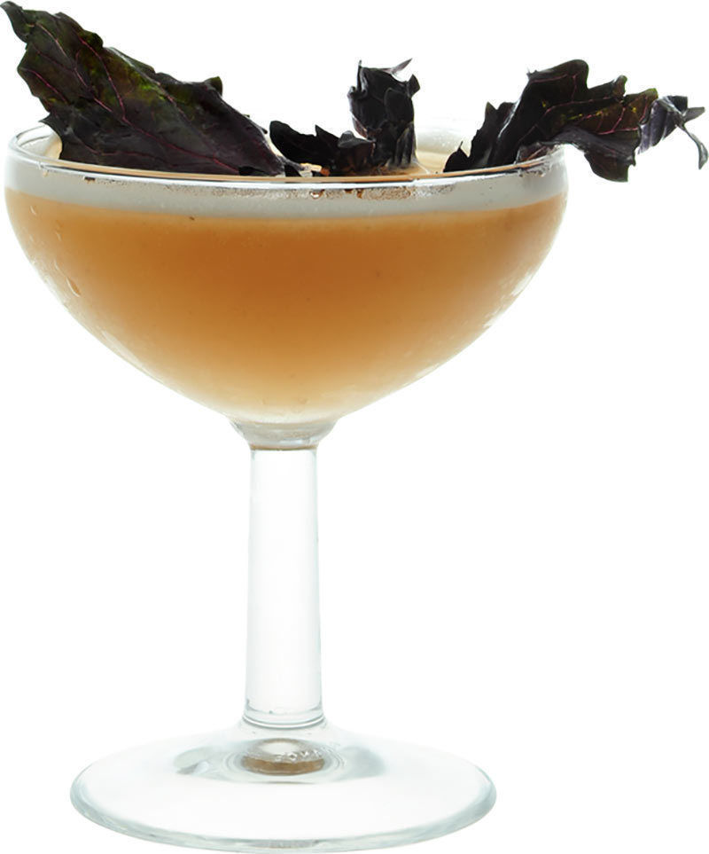 Comment préparer le cocktail Daiquiri basilic